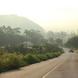 숲길,농로길 등 도로명이 없어 불편했던 곳에 직접 도로명 신청한다.