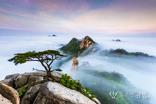 산림문화작품공모전 대상에 '섬이된 북한산'